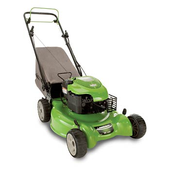 Lawn boy 10647 as well Lawn boy 22243 besides P 07137041000P besides Crohns Disease in addition 2000 2005ClubCarGasElectric. on bag boy repair parts